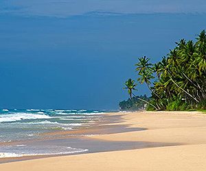 Sri Lanka Tour special offers with Sunway