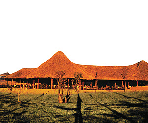 Stay at the The Best of Kenya, Kenya Safari with Sunway