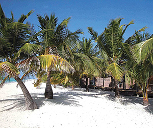 Maldives Accommodation - Kuredu Island Resort - Sunway.ie