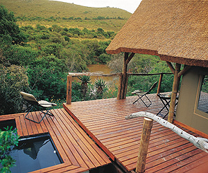 Stay at the Shamwari Private Game Reserve, Cape Town & Winelands with Sunway