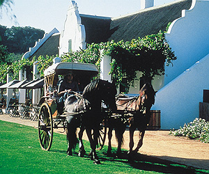 Stay at the Spier, Cape Town & Winelands with Sunway