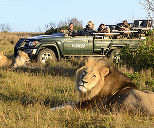 Kariega Game Reserve, The Garden Route