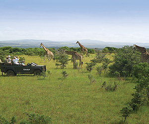 The Garden Route Accommodation - Kariega Game Reserve - Sunway.ie