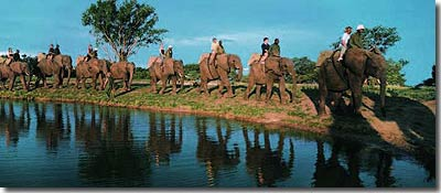 Safari Lodges Accommodation - Kapama Private Game Reserve - Sunway.ie