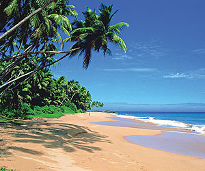Choose Sunway for your Sri Lanka Holiday