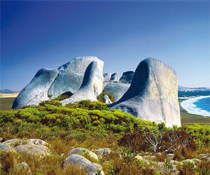 Australia & New Zealand Escorted Tours and Trip with Sunway